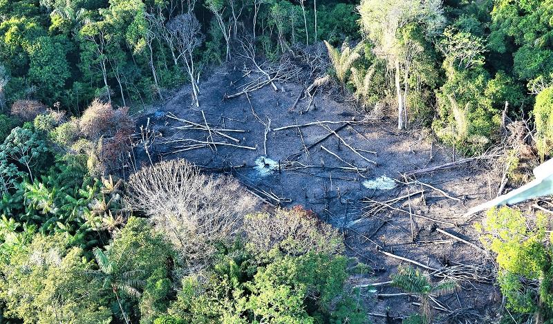 Noruega anuncia suspensão de R$ 133 milhões para o Fundo Amazônia