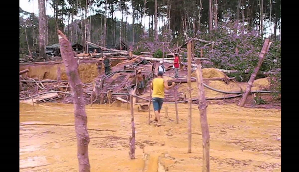 Risco à vida no Madeira faz Justiça cassar licenças ambientais do Ipaam