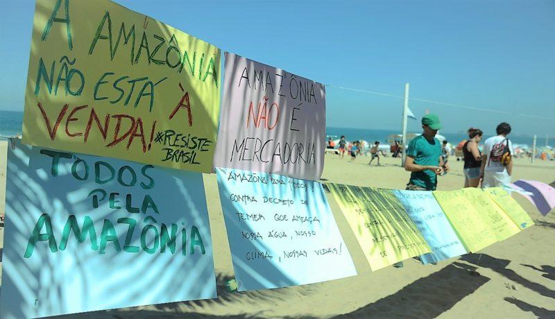 """Ongs se unem para reagir a discursos """"deslegitimadores"""" de Bolsonaro"""