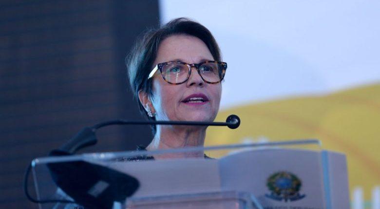 Ministra da Agricultura defende 'zerar' o desmatamento na Amazônia