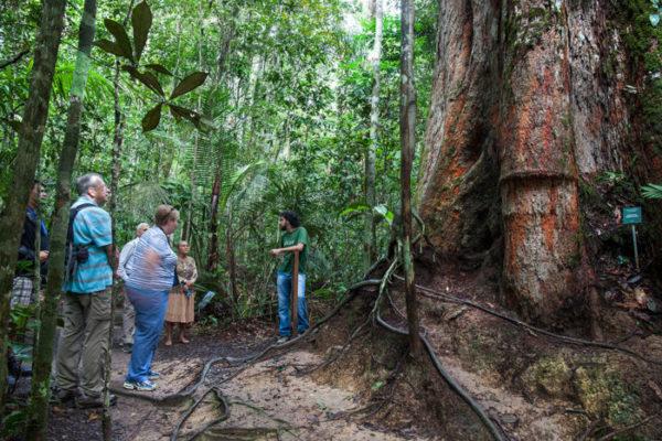 Amazonas é um dos três roteiros na natureza indicados por polonês