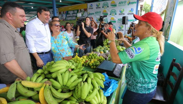 Agropecuária e retomada da silvinita aquecerão economia do estado