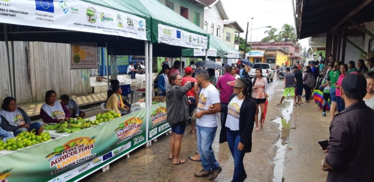 Conab seleciona 64 projetos de agricultura familiar do Amazonas