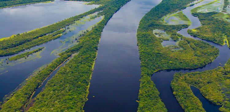 STF convoca governo para mostrar plano ambiental da Amazônia