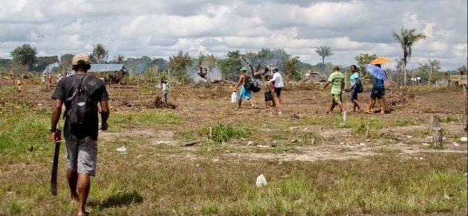 """Projeto incentiva """"privatização"""" da floresta, dizem especialistas"""