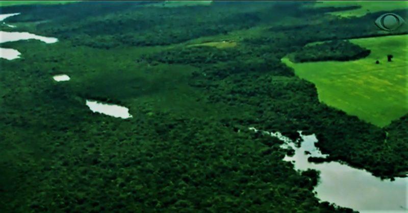 Parlamentares apelam à Noruega e Alemanha pelo Fundo Amazônia