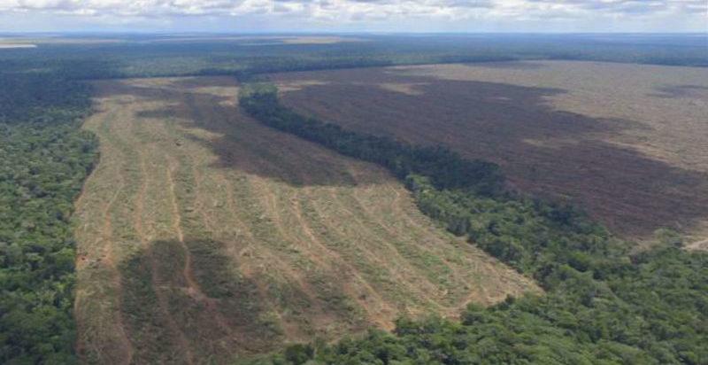 Pela Amazônia, Bolsonaro vai receber protesto no mundo hoje