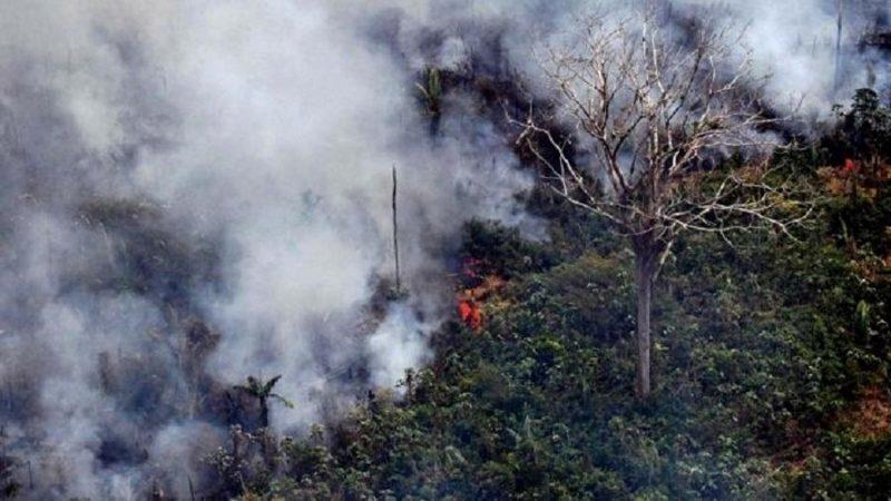 G7 oferece ajuda aos países afetados por incêndios na Amazônia