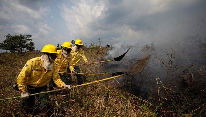 Registros de crimes de queimadas e desmate caem 23% na Amazônia