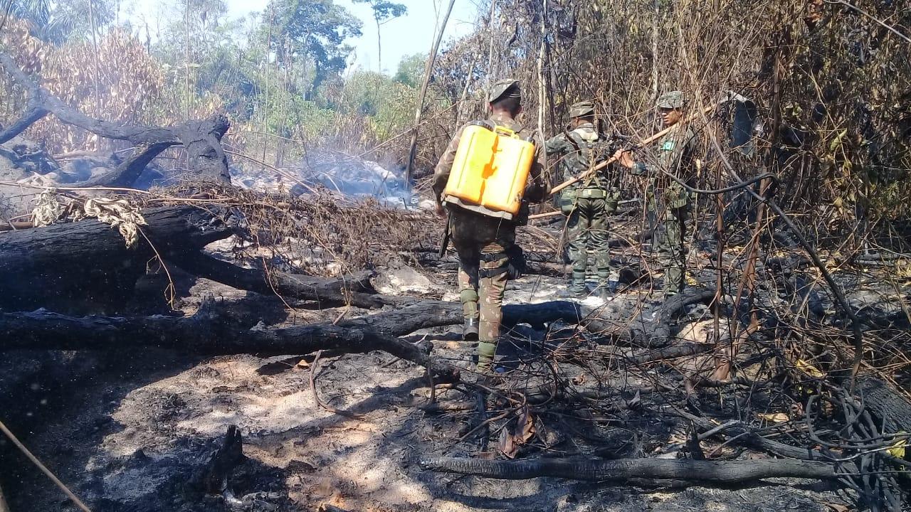 Governo Bolsonaro engaveta R$ 33 milhões do Fundo Amazônia