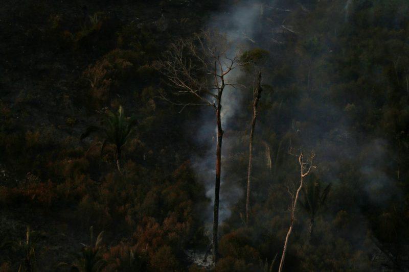 Queimadas na Amazônia em junho são maiores em 13 anos