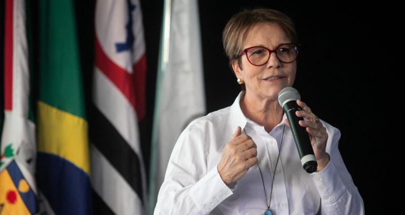 Ministra afirma que desmatamento na Amazônia não afeta agronegócio