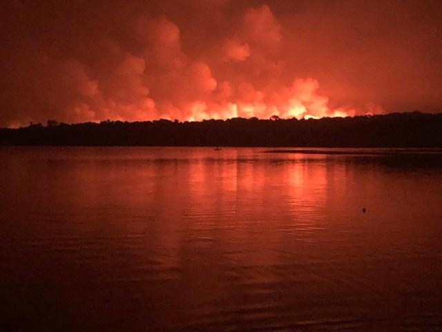 Polícia prende quatro suspeitos de incêndios criminosos na floresta