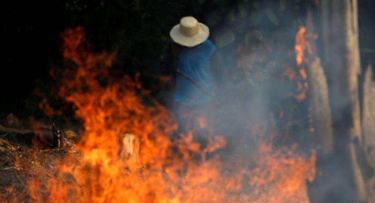 Amazônia e economia lideram lista de fake news públicas averiguadas