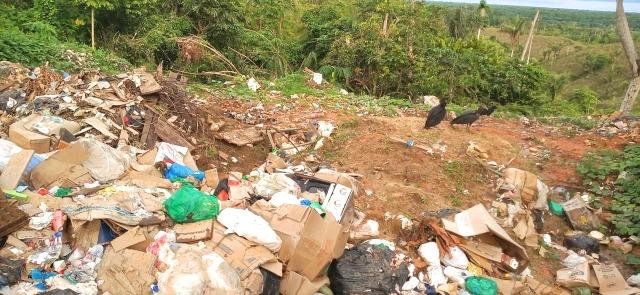 Amazonas entre estados que tentambanir sacolas plásticas no comércio