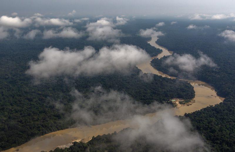 Amazônia pode ser maior do que aparece no mapa, diz estudo