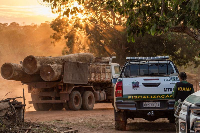 """Sindicato da pistolagem"" impõe terror na disputa por terras na Amazônia"