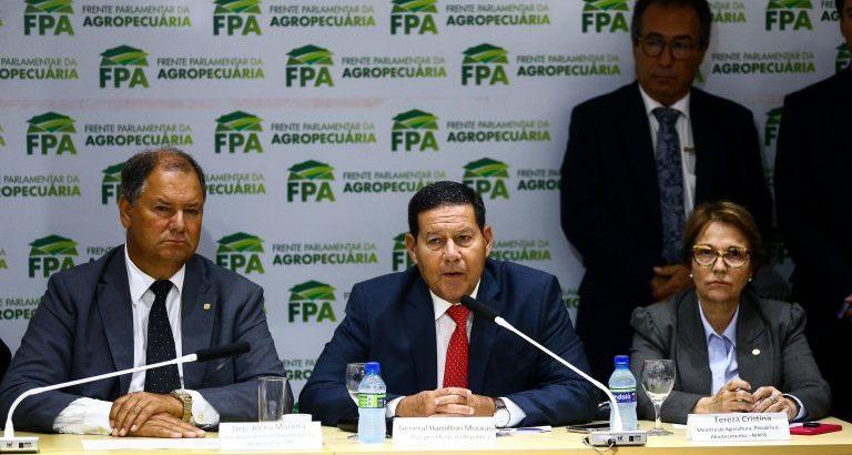 Está próximo o decreto do Conselho da Amazônia e Força Ambiental