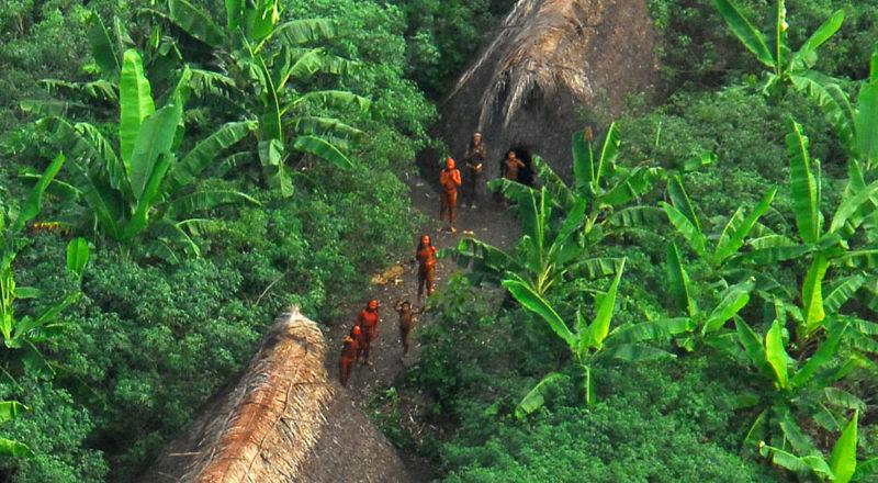 MPF barra equipe da Funai e cobra quarentena para entrar no Vale do Javari