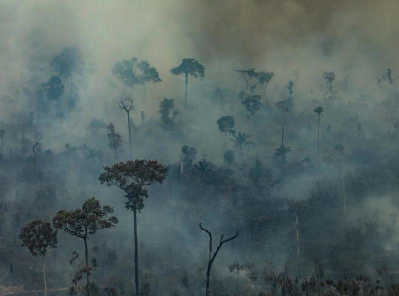Governo Bolsonaro vai proibir queimadas na Amazônia por quatro meses