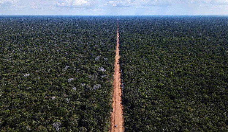 Recuperação da BR-319 está entre as 153 obras do plano Pró-Brasil