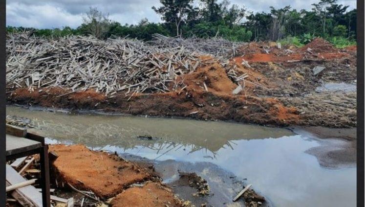 Flagrante da PF em madeireira por crime ambiental, furto e falsidade