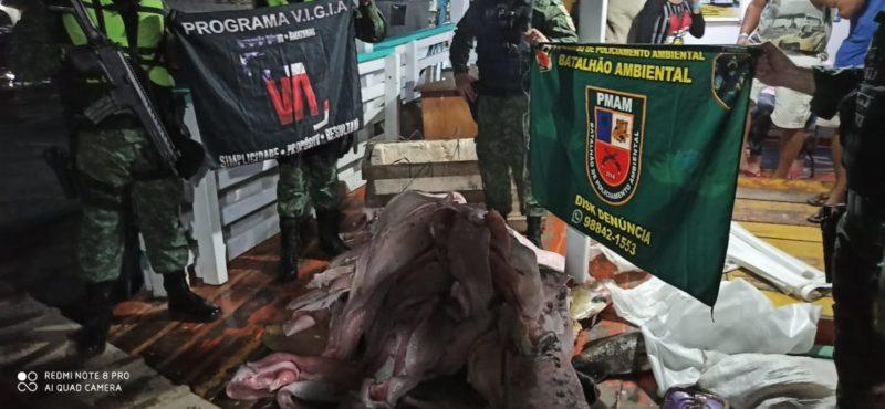 Com cães, PM Ambiental apreende carga ilegal em porto de Manaus