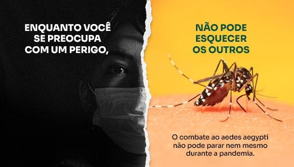 O Aedes pode matar. É preciso evitar