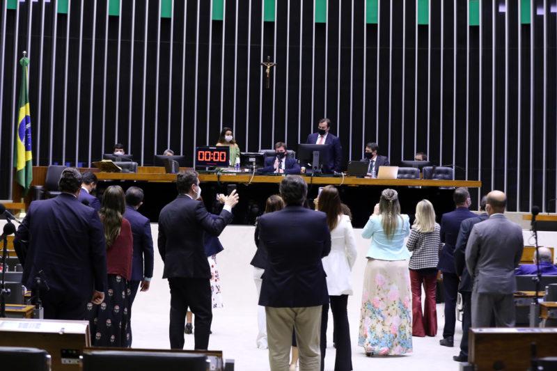 Bancada do Amazonas vota unida pela aprovação do novo Fundeb
