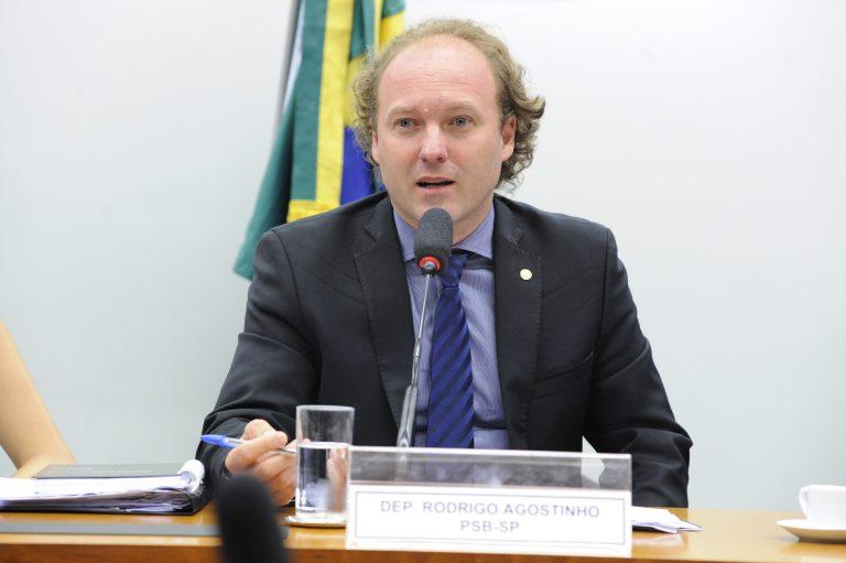 """Projeto da """"Comissão Verde"""" aumenta pena para desmatamento ilegal"""