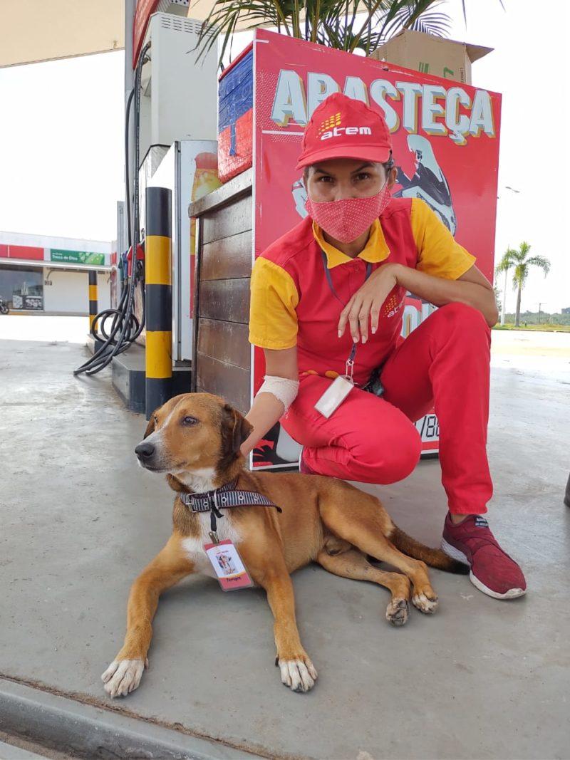 Cachorro é adotado no Atem/Iranduba e ganha crachá de funcionário do posto