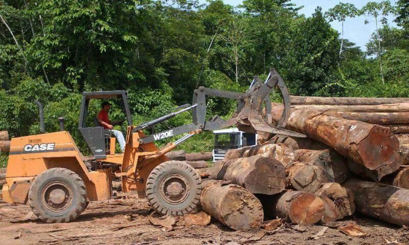 Partidos e entidades acionam STF contra desmatamento na Amazônia