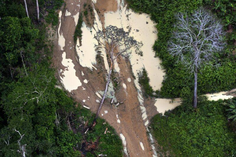 Amazônia teve pior desmatamento em março apesar de operação militar