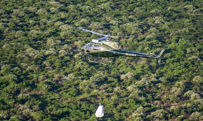 MPF investiga venda ilegal de terras na Amazônia por Facebook
