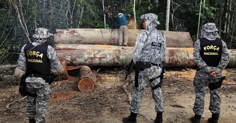 Força Nacional reforça combate a crimes ambientais na Amazônia