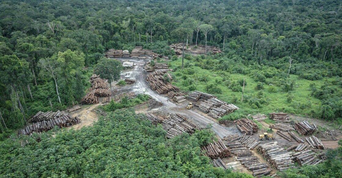 Desmatamento na Amazônia Legal bate recorde em três meses seguidos