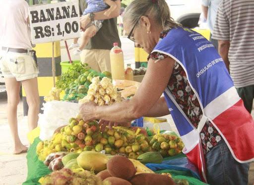 Com apoio do Sebrae, feira de produtos orgânicos retorna no Mapa
